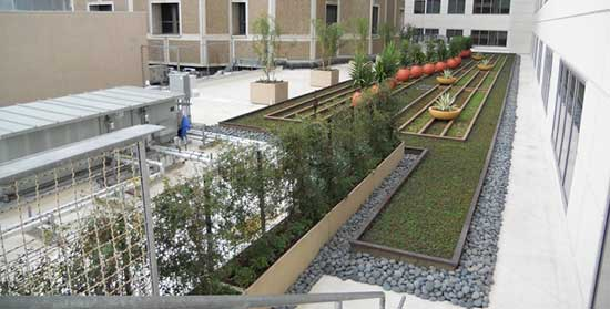 Example of eco-friendly green roof garden - Sharp Hospital